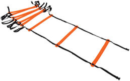 Precision Agility Ladder TR658 4-Meter