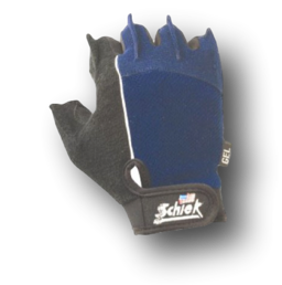 Schiek 510 Cross Training And Fitness Gloves